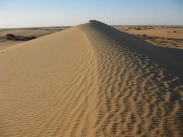 LUXOR SAFARI -OASIS-Egypt11