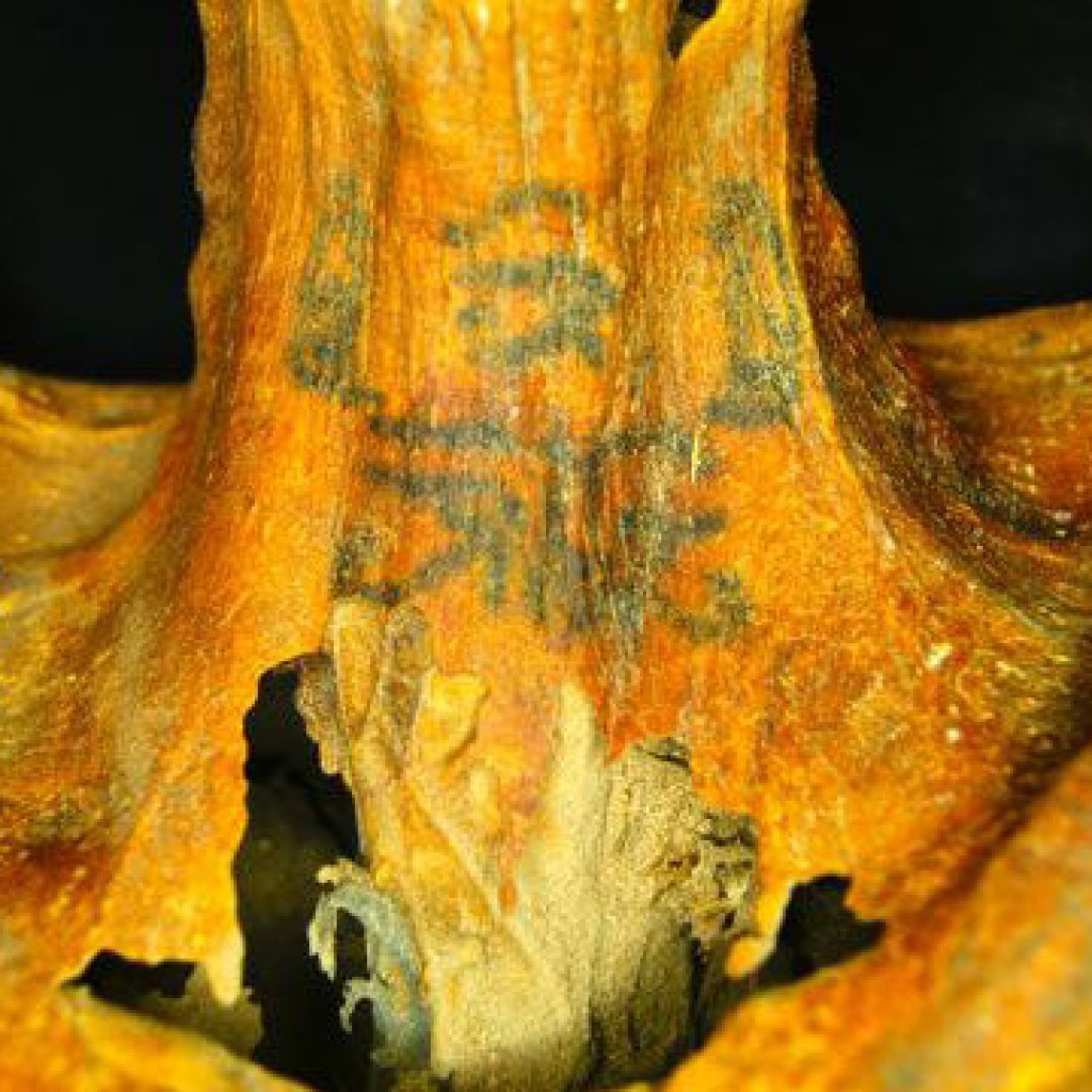 3000-year-old Female Mummy Was Covered In Hidden Tattoos